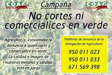 Coag difunde la campaña 'No cortes ni comercialices en verde'