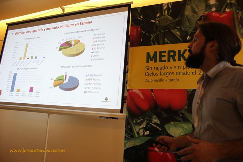 La superficie de california rojo en Almería crece a una media anual del 8% (vídeo)