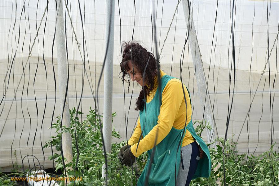 Primeros pasos del plan de igualdad de mujeres y hombres en el agro