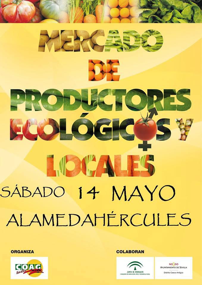 Día 14 de mayo. MERCADO en la Alameda de Sevilla
