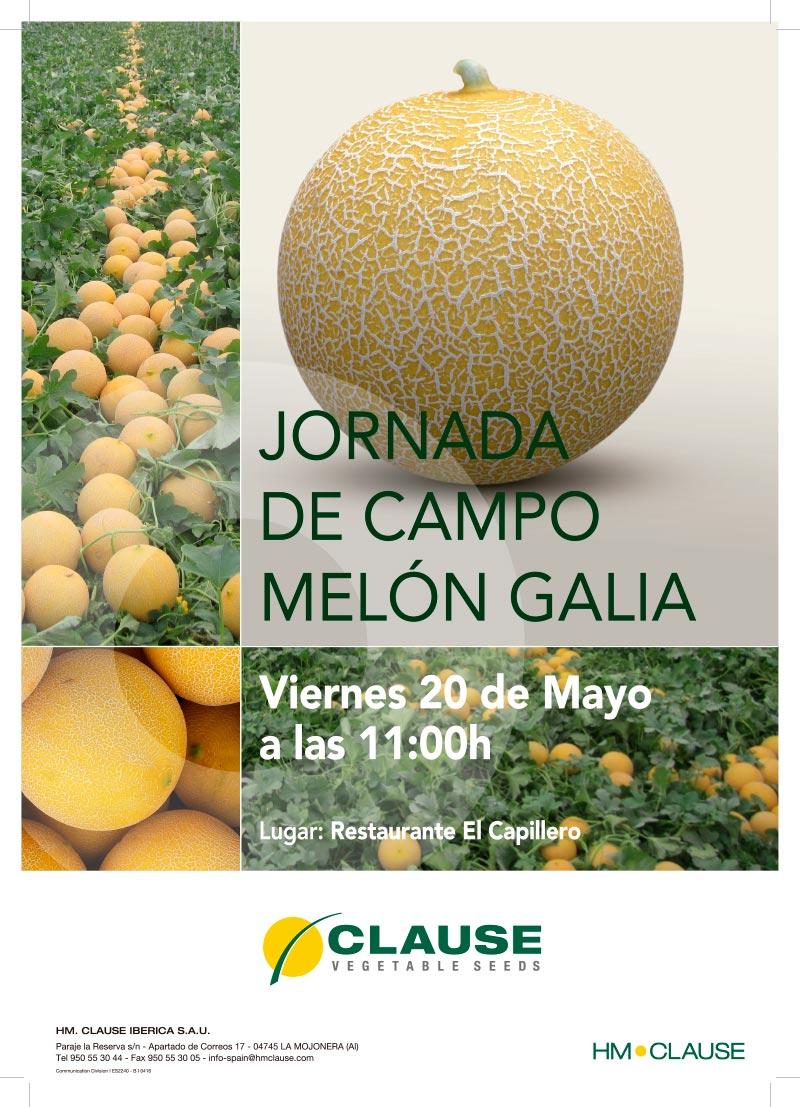 Día 20 de mayo. Jornada de campo melón galia de HM Clause