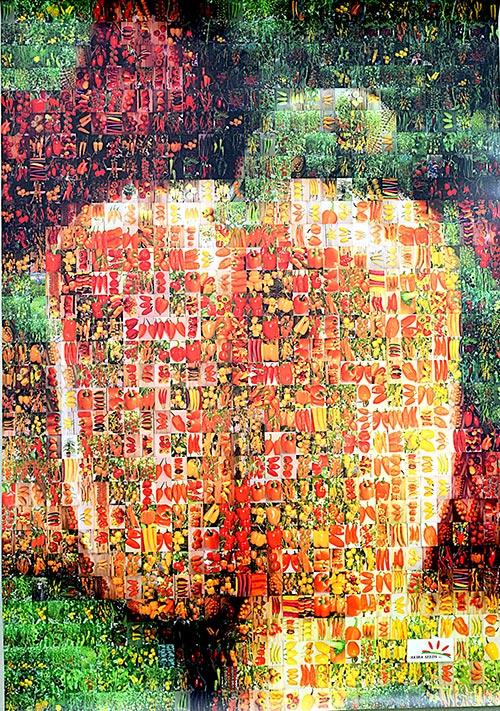 Mural con el amplio catálogo de Akira Seeds.