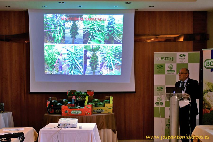 Anecoop crea un grupo de agricultores de papaya