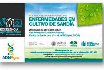 Día 22 de junio. Jornada 'Enfermedades en cultivo de sandías'. Valencia
