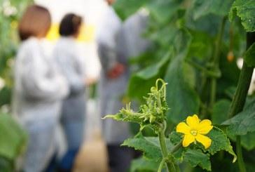Día 3 de mayo. Jornada 'Avances necesarios en el control biológico'