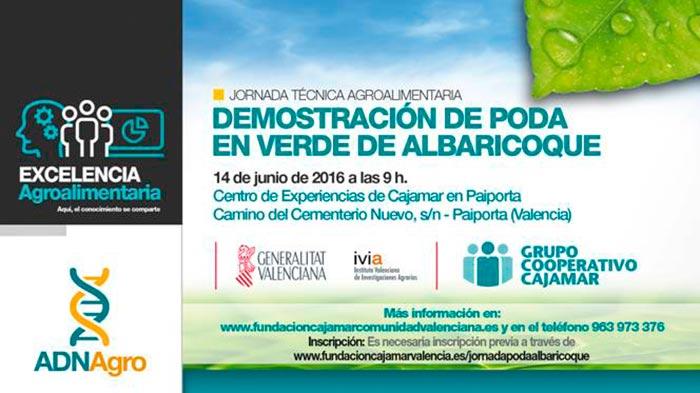 Día 14 de junio. Jornada 'Demostración de poda en verde de albaricoque'. Valencia