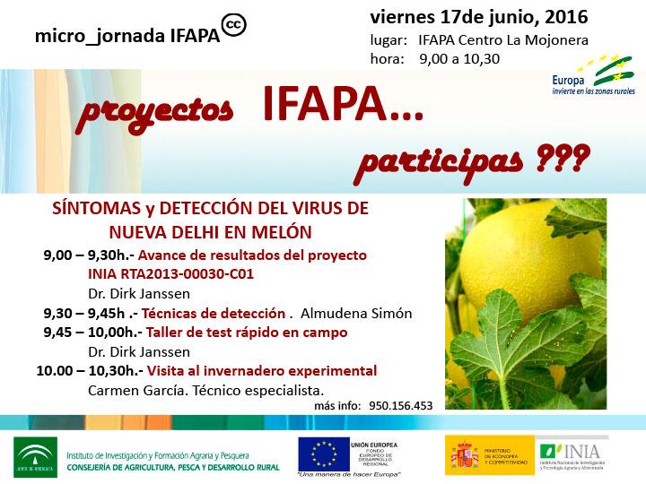 Día 17de junio. Jornada sobre síntomas y detección del Nueva Delhi. IFAPA