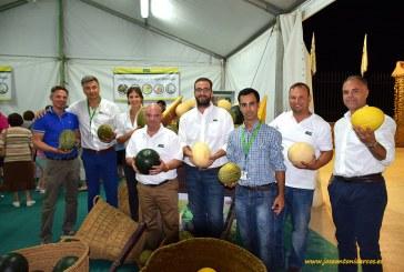 'Manchego' y 'Castellano', los nombres castizos de los piel de sapo de Fitó para La Mancha