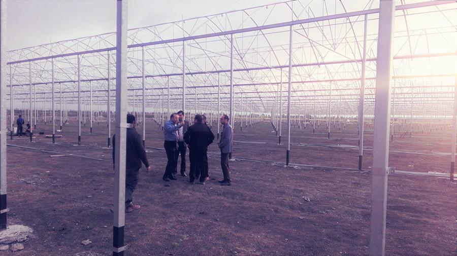 Invernaderos en Irán.