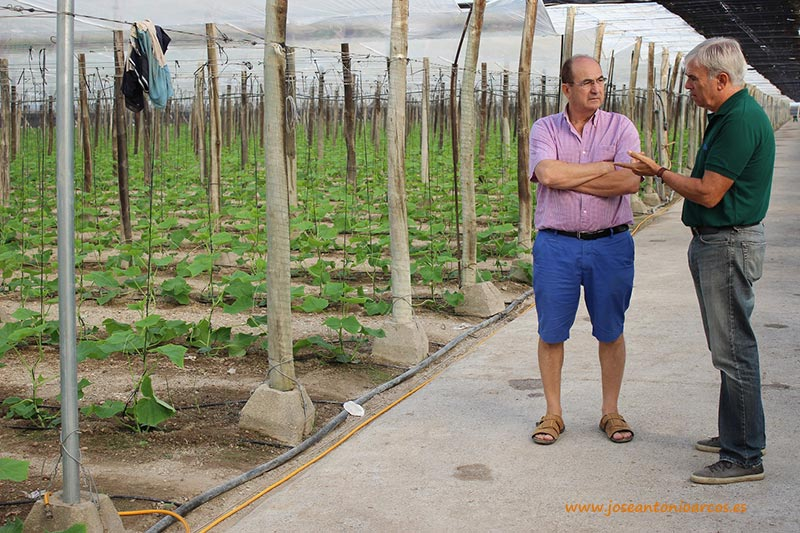 Un agricultor de El Ejido, acompañado por su técnico de campo.