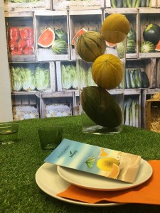 Melon Week de Seminis en el campo de Cartagena, Murcia