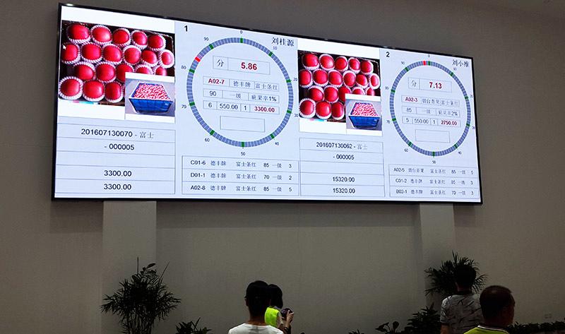 La agricultura china se capitaliza