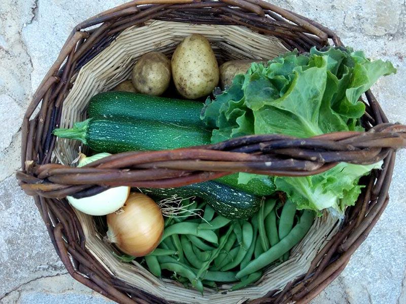 Cesta con verduras de temporada. Foto: Asociación 'La huerta del pueblo'