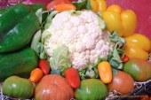 Charlas sobre el estilo de dieta mediterránea