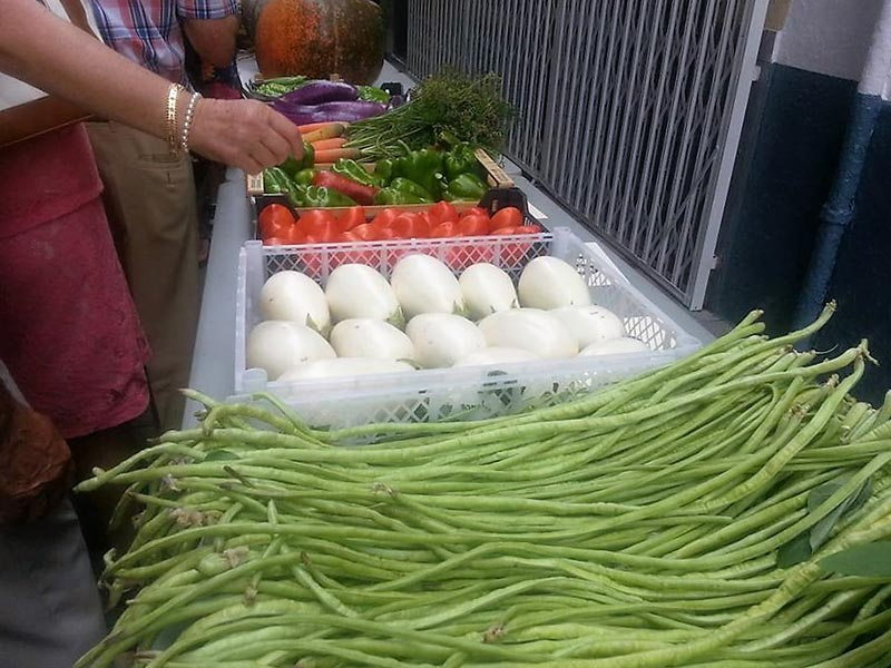 Feria de productos locales, frutas y hortalizas, en Málaga, Benalmádena, Alhaurín de la Torre