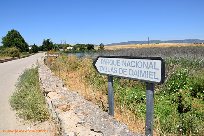 Río Guadiana. Tablas de Daimiel, Ciudad Real, Castilla-La Mancha.