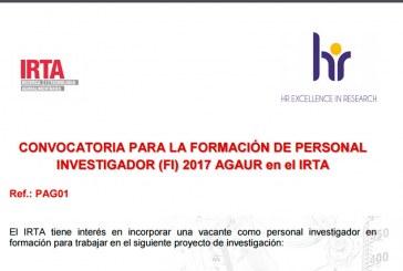 IRTA busca investigador en formación para proyecto de investigación
