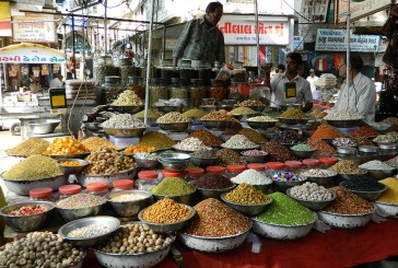 El Nueva Delhi no es sólo un virus. Misión comercial a India