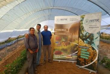Nostoc difunde los conceptos de la bioagricultura en Huelva, Granada y Almería