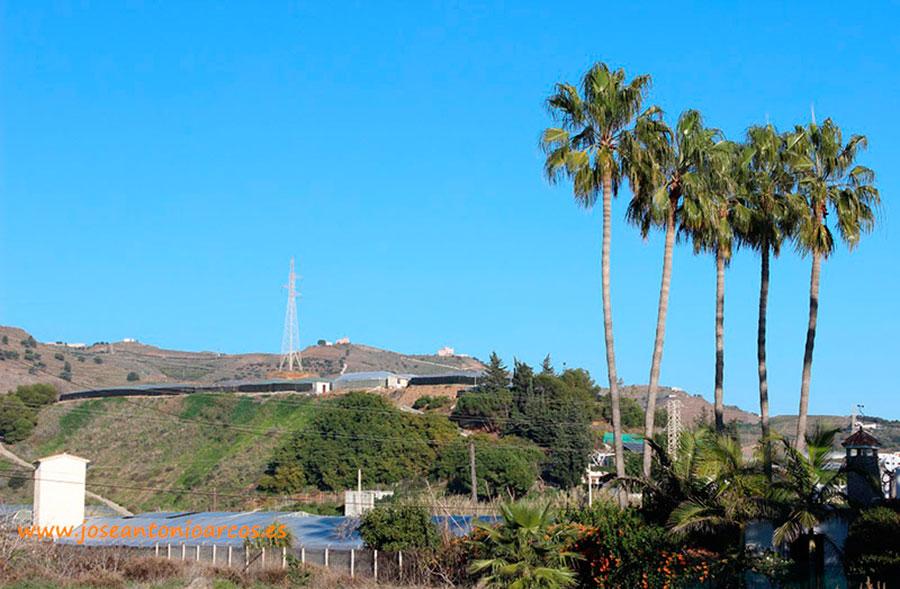 Unica Group se asoma a otra zona productora: Málaga