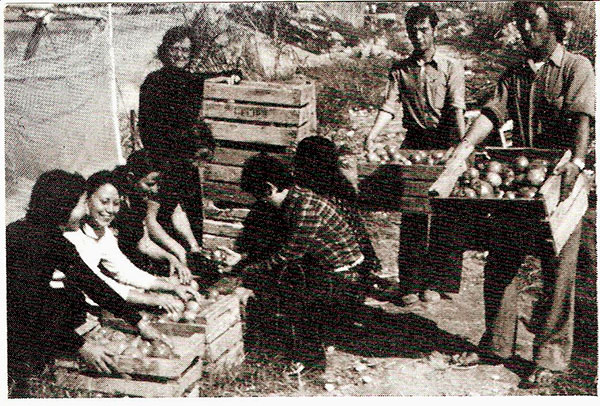 agricultores-2