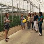Ejemplos de invernaderos gestionados por mujeres