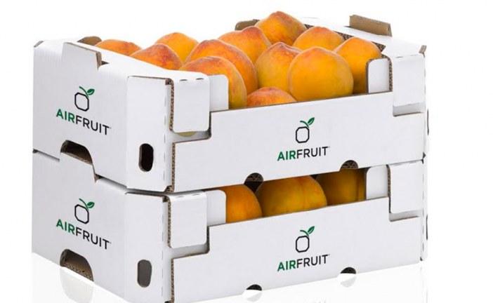 El sistema de transporte Airfruit logra enfriar más rápido la fruta