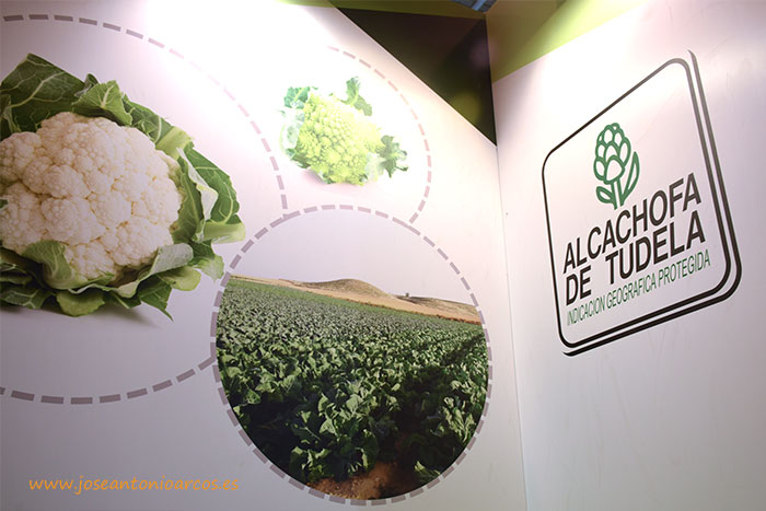 IGP Alcachofa de Tudela en el expositor de Silvana Fruits en Fruit Attraction 2016.