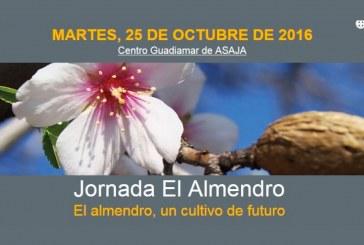Día 25 de octubre. Jornada 'El Almendro'. Sevilla