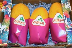 Papayal, papaya de Almería.