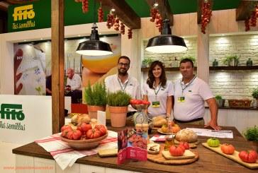 La posición global de Fitó: melón amarillo, pepino holandés y berenjena