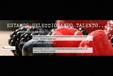 Surexport busca técnico agrícola y técnico calidad ISO9001