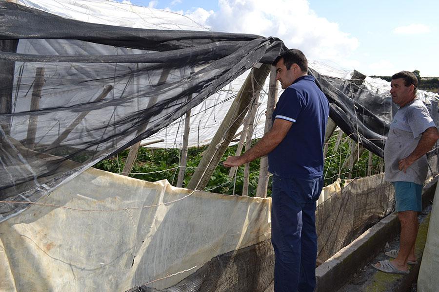 A partir del lunes los agricultores de las riadas del Poniente podrán pedir ayudas