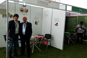 El lavado higiénico de aguacates de Citrosol llega a Perú