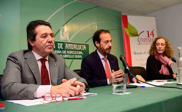 XIV Symposium Nacional de Sanidad Vegetal en Sevilla