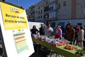 venta-directa-de-hortalizas-2