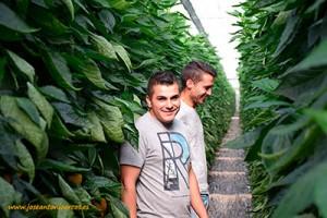 Jóvenes agricultores almerienses.