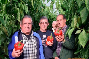 agricultores-en-la-jornada-de-seminis