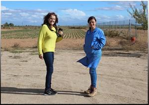Ana Rubio en un campo de azafrán en Madridejos, Toledo.