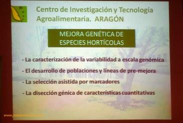 El CITA preserva colecciones de cardo casi desaparecidas del campo español