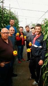 Agricultores de Adra en la jornada de Agrinature Indálica para conocer la nueva variedad de california amarillo, 'Cartero'.