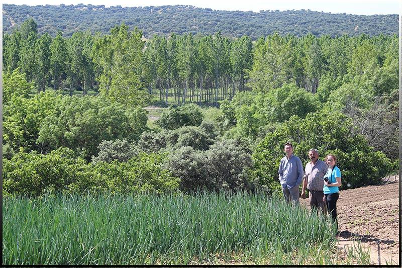 Ana Rubio en un campo de Cebollas en el sur de Madrid.