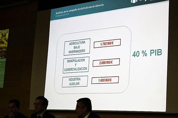 La agricultura en el PIB de Almería supone el 40% del total.