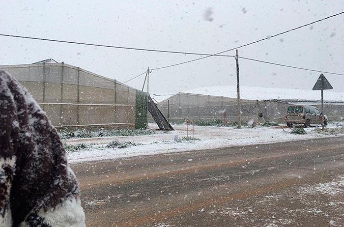 Nieve en el campo de Cartagena, invernaderos de San Javier, en la región de Murcia