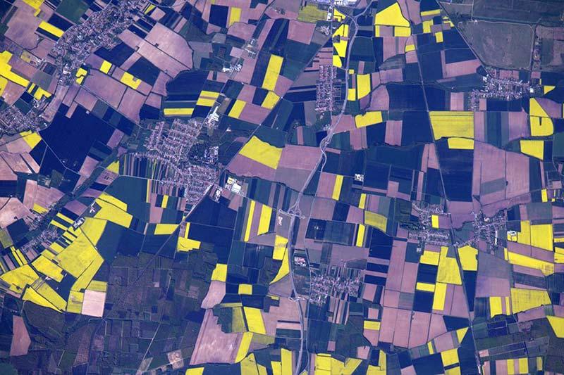 Las imágenes agrícolas del astronauta Jeff Williams