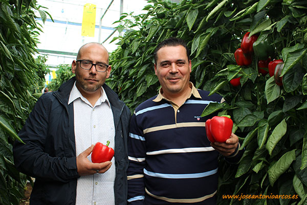 José Antonio Rivero y Francisco Orozco con 'Aitana'.