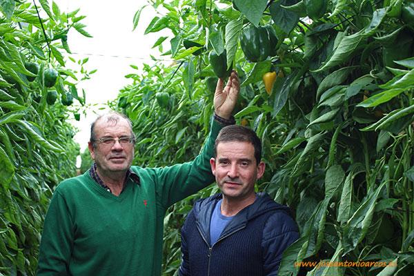 Gabriel Benavides, agricultor de Murgiverde, y Miguel Martínez, de Vicasol.