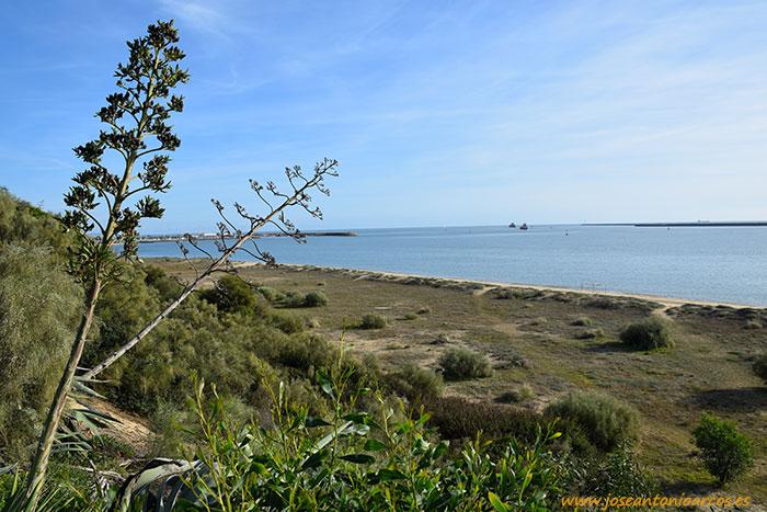 Playa de Mazagón, Huelva.