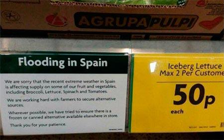 Morrison. Supermercados británicos sin hortalizas por la ola de frío