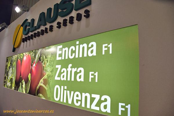 Nuevas variedades de Clause en tomate de industria: Encina, Zafra y Olivenza.